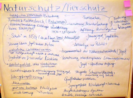 Ergebnisse Diskussion Gruppe Naturschutz Forbach