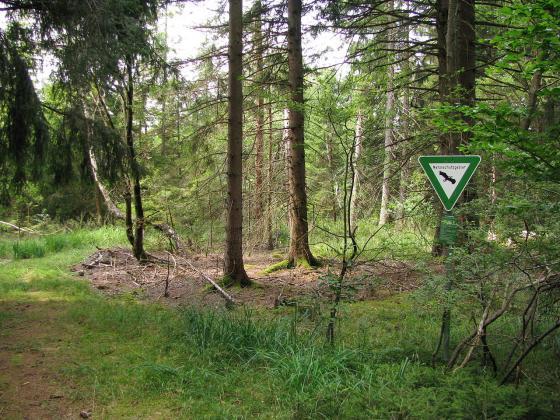 Symbolbild Naturschutz