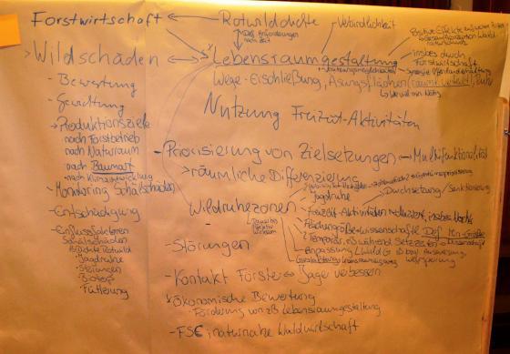 Ergebnisse Diskussion Gruppe Waldwirtschaft Enzklösterle