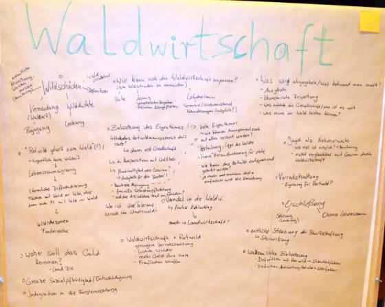 Ergebnisse Diskussion Gruppe Waldwirtschaft Forbach