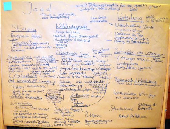 Ergebnisse Diskussion Gruppe Jagd Forbach