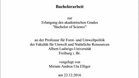 Titelblatt Bachelorarbeit