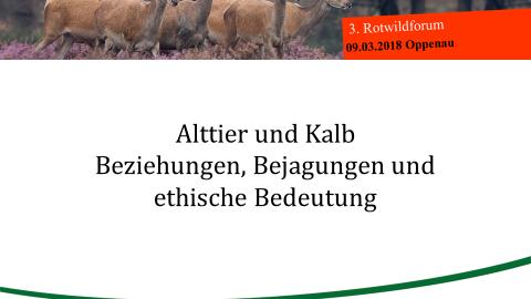 Alttier und Kalb, Beziehungen, Bejagungen und ethische Bedeutung - 3. Rotwildforum in Oppenau